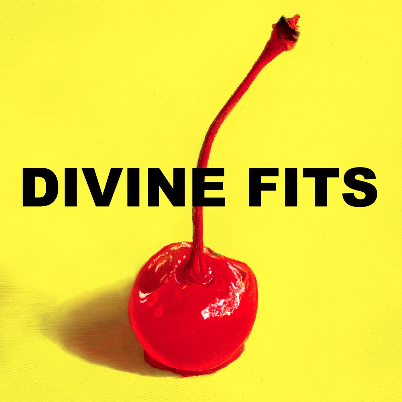 Divine Fits, A Thing Called Divine Fits