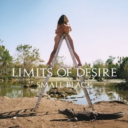Small Black, Limits of Desire