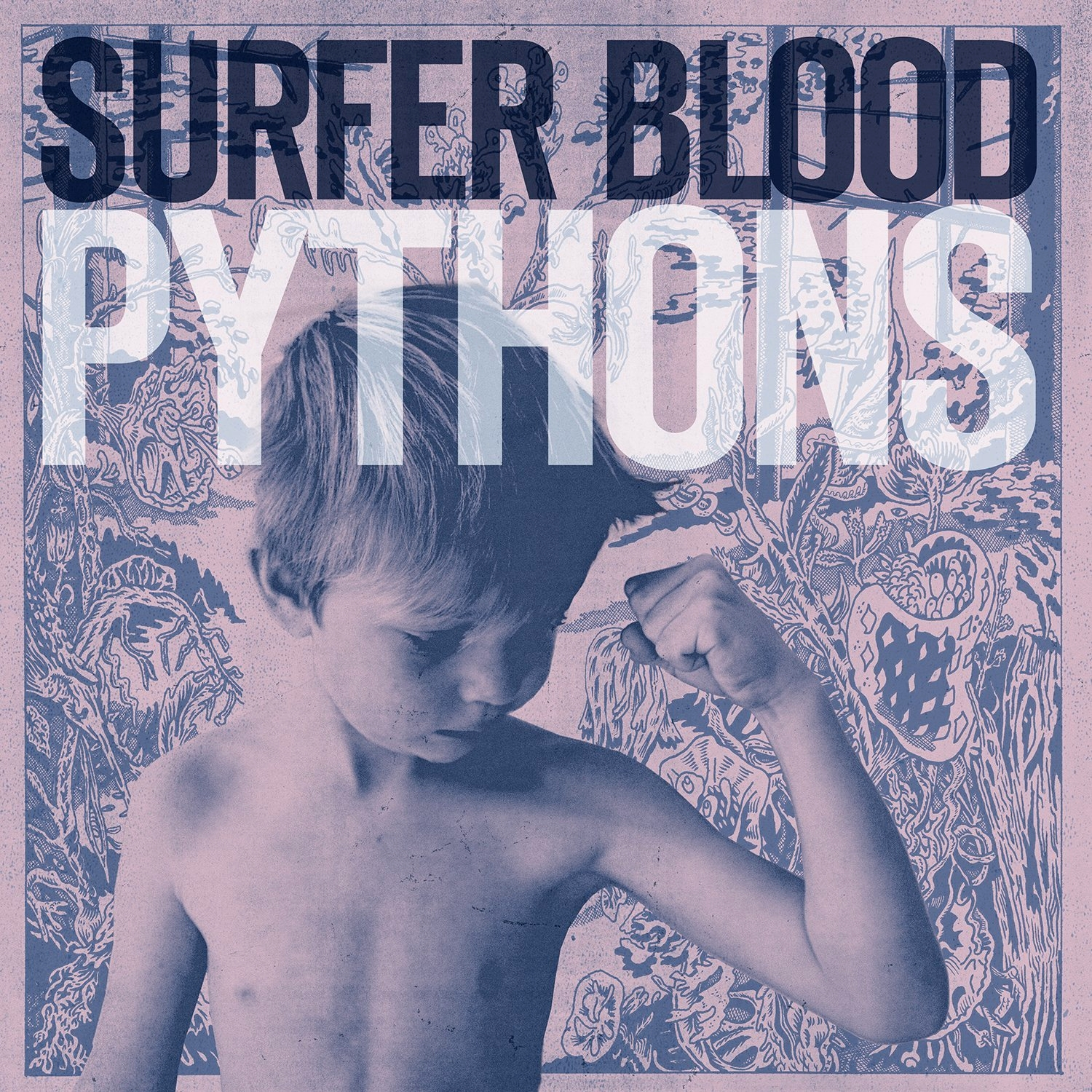 Surfer Blood, Pythons