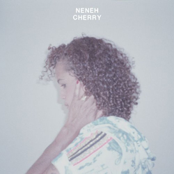 Neneh Cherry, Blank Project