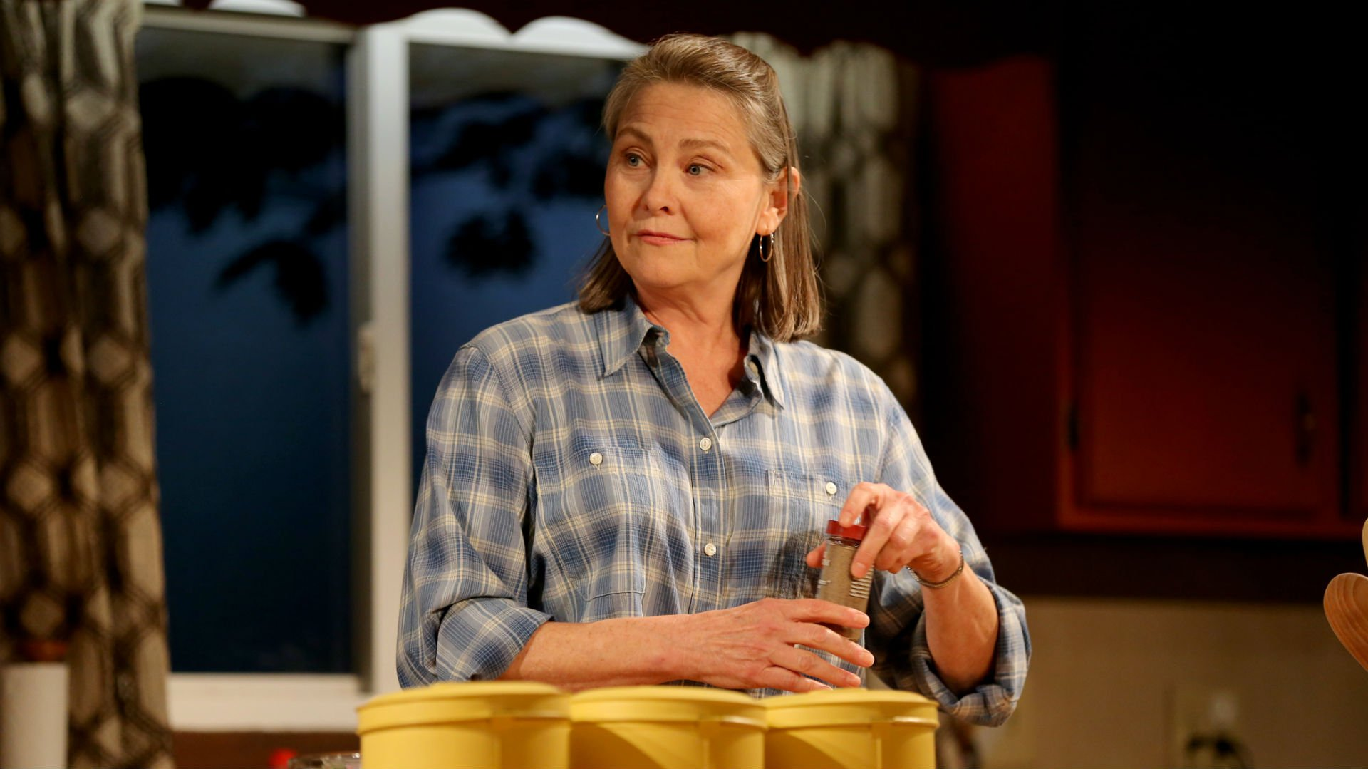 When We Were Young and Unafraid Interview with Cherry Jones