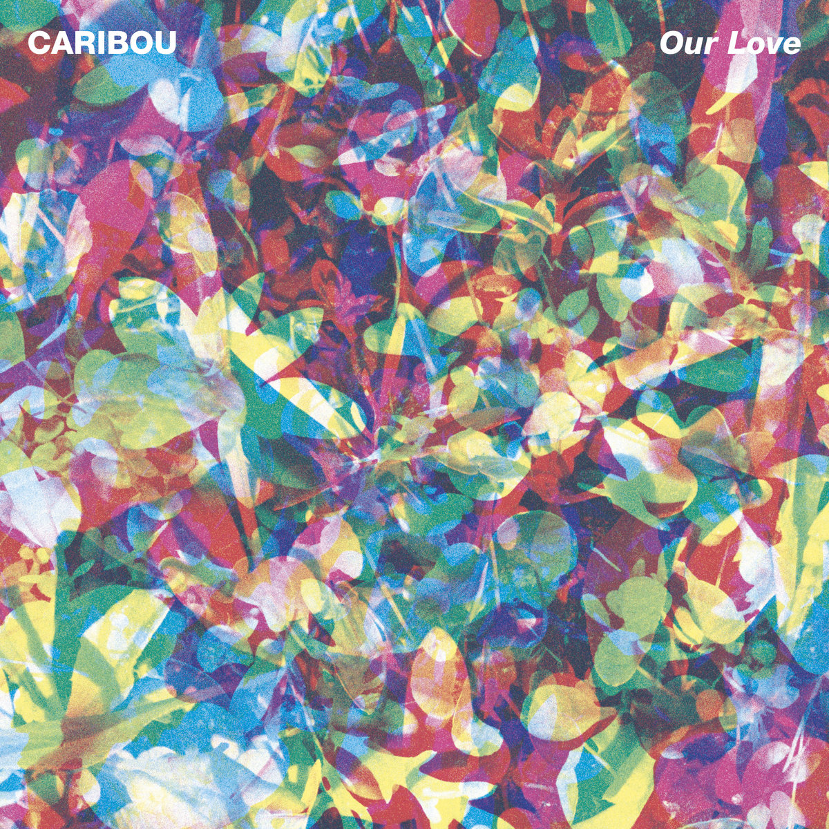Caribou, Our Love