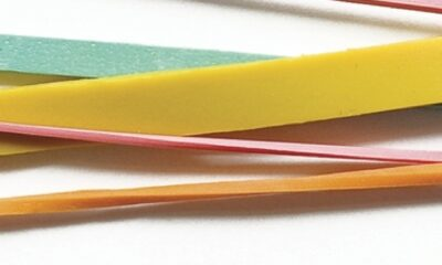 David Foster Wallace, Both Flesh and Not