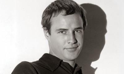 Susan L. Mizruchi, Brando's Smile