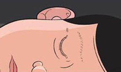 Chris Ware, Building Stories