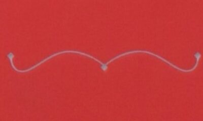 Strange, Complicated Lives: Ann Beattie's The New Yorker Stories