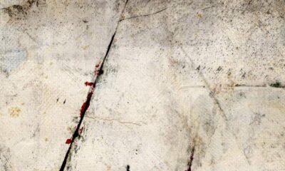 Yoko Ogawa, Revenge