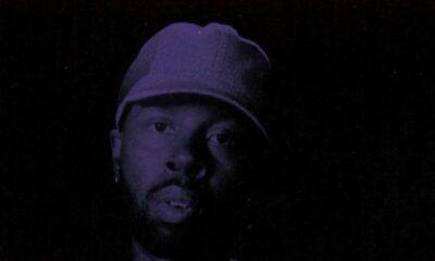 J Dilla, The Diary