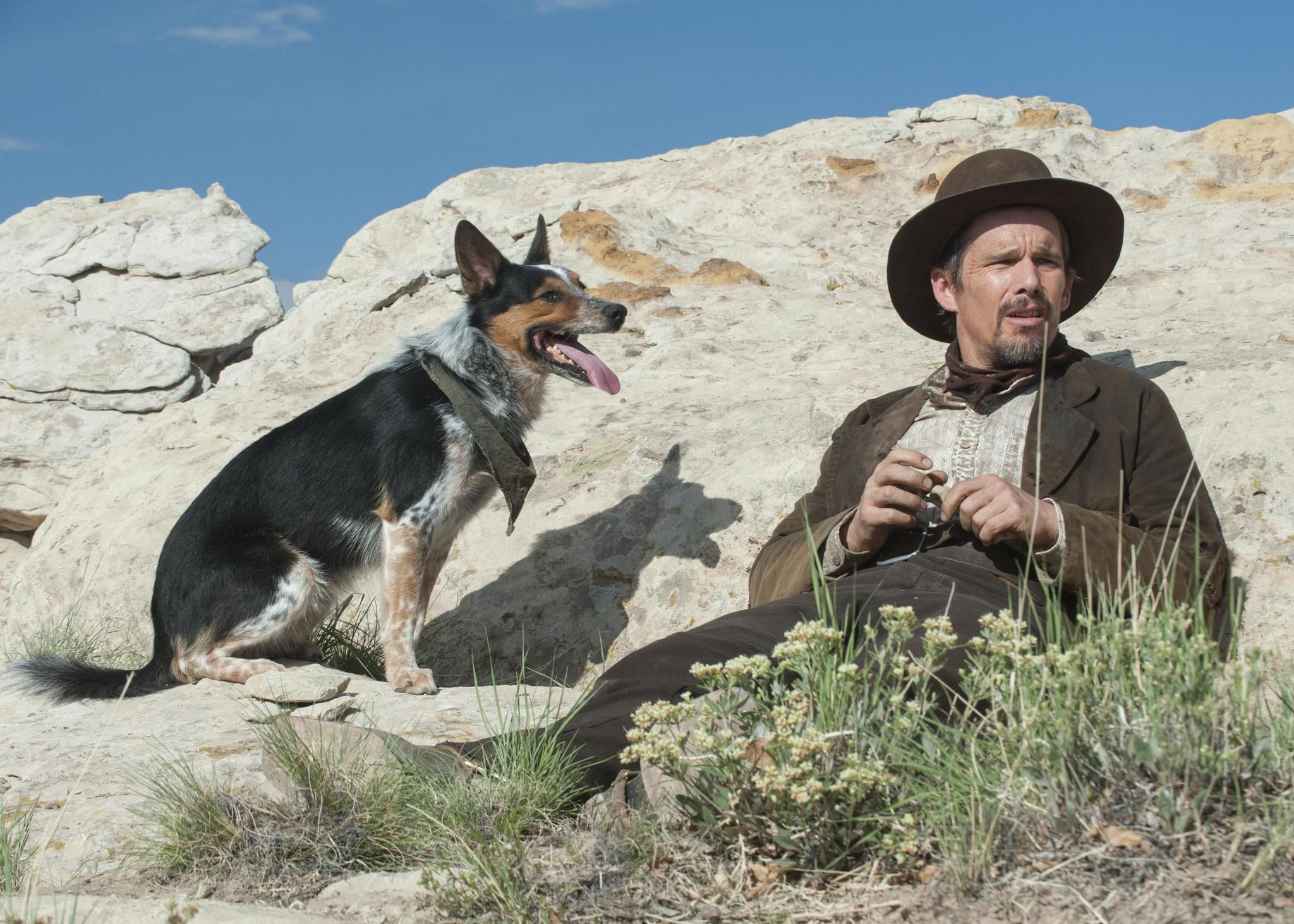 BAMcinemaFest 2016: Ti West's In a Valley of Violence