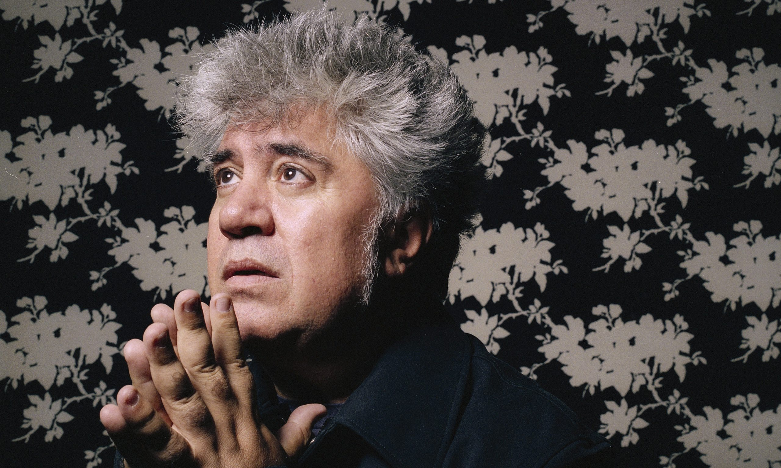 The Films Of Pedro Almodovar Ranked Slant Magazine