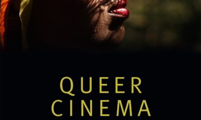 Review: Karl Schoonover and Rosalind Galt's Queer Cinema in the World