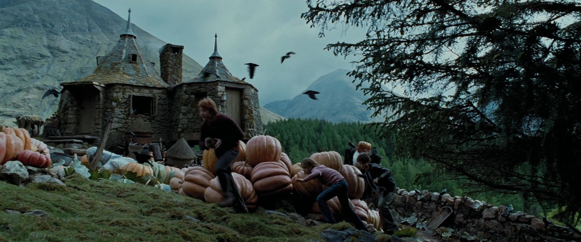 Week with a Wizard, Day 3: Harry Potter and the Prisoner of Azkaban