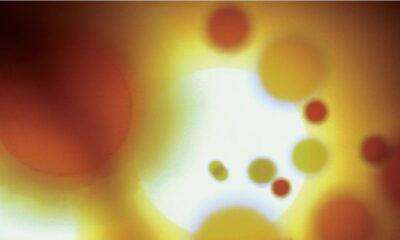 Mudhoney, Under A Billion Suns