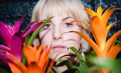 Hayley Williams, Petals for Armor